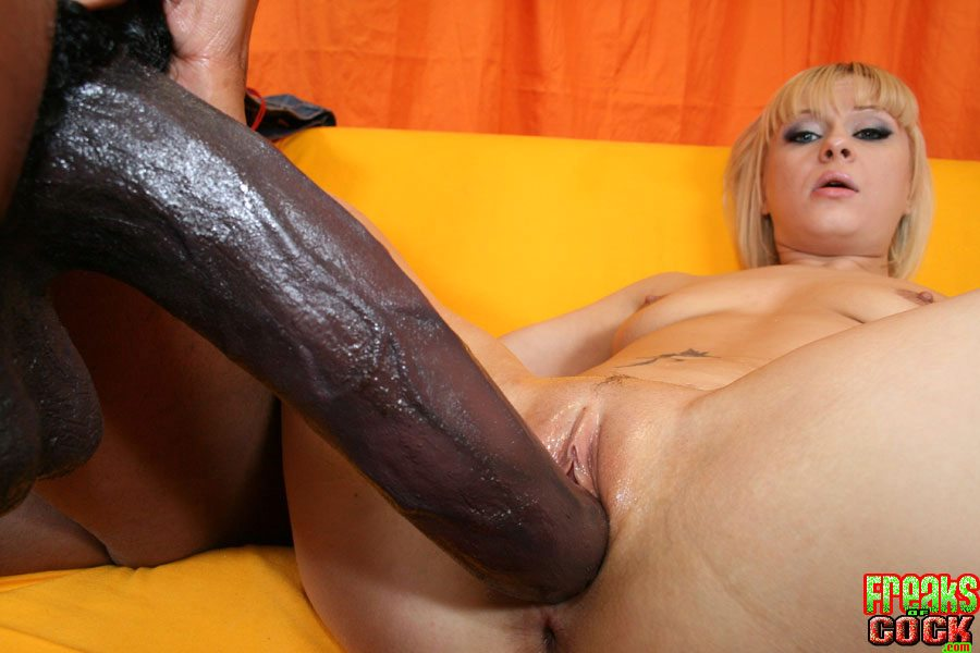 Aaralynn interracial blackcock