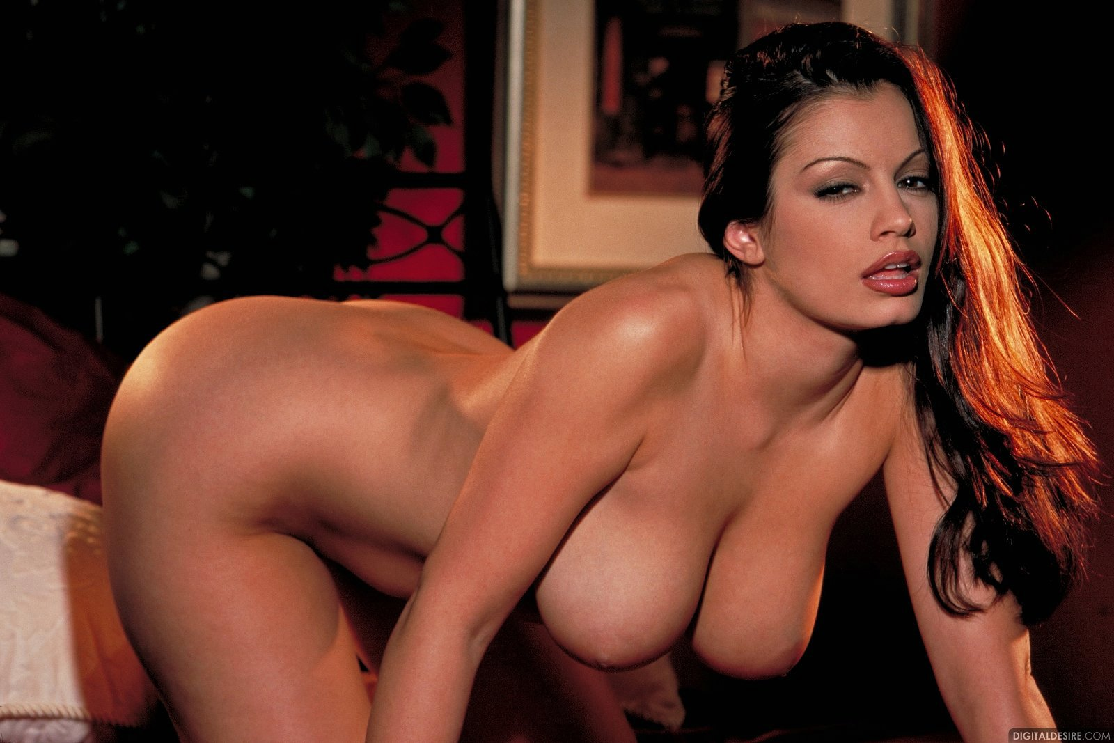 Aria Giovanni - Naturally Busty