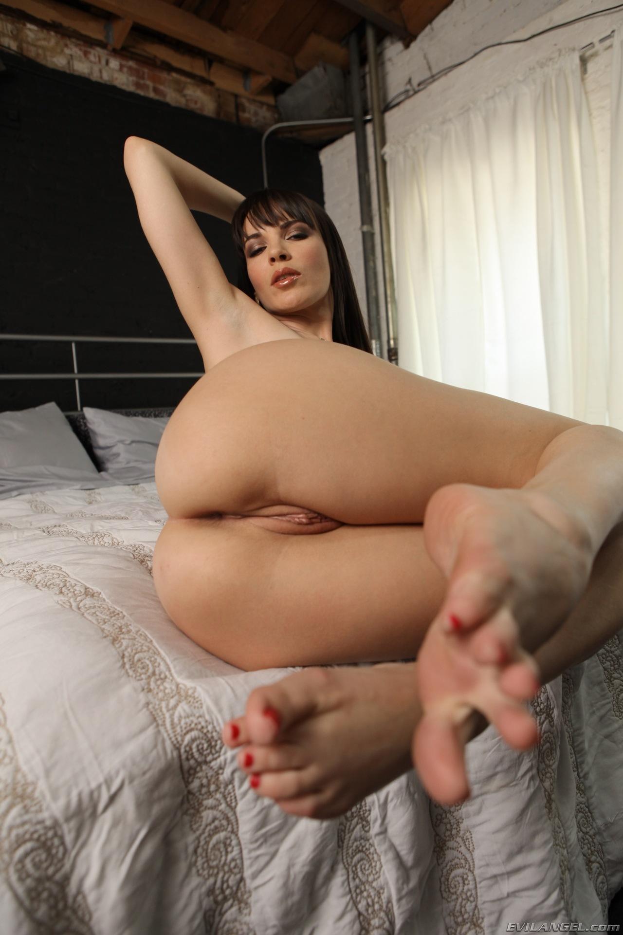 dana porn actress
