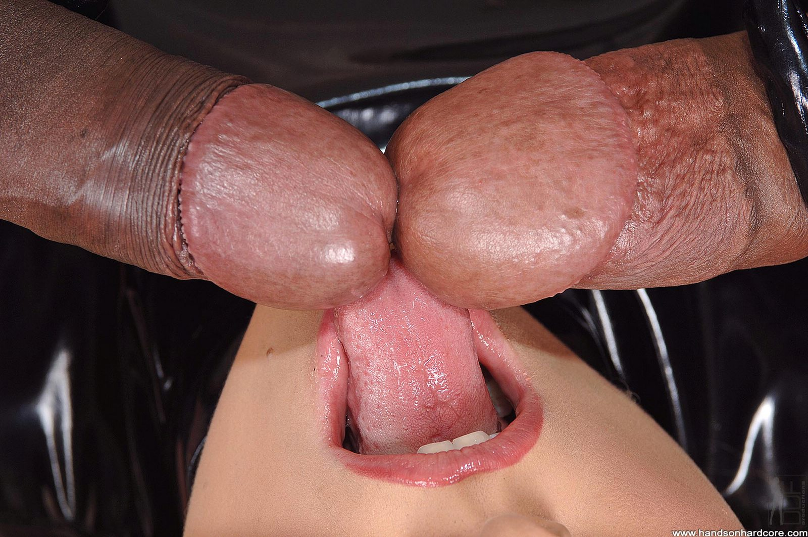 Showing media posts for big cock head in pussy xxx