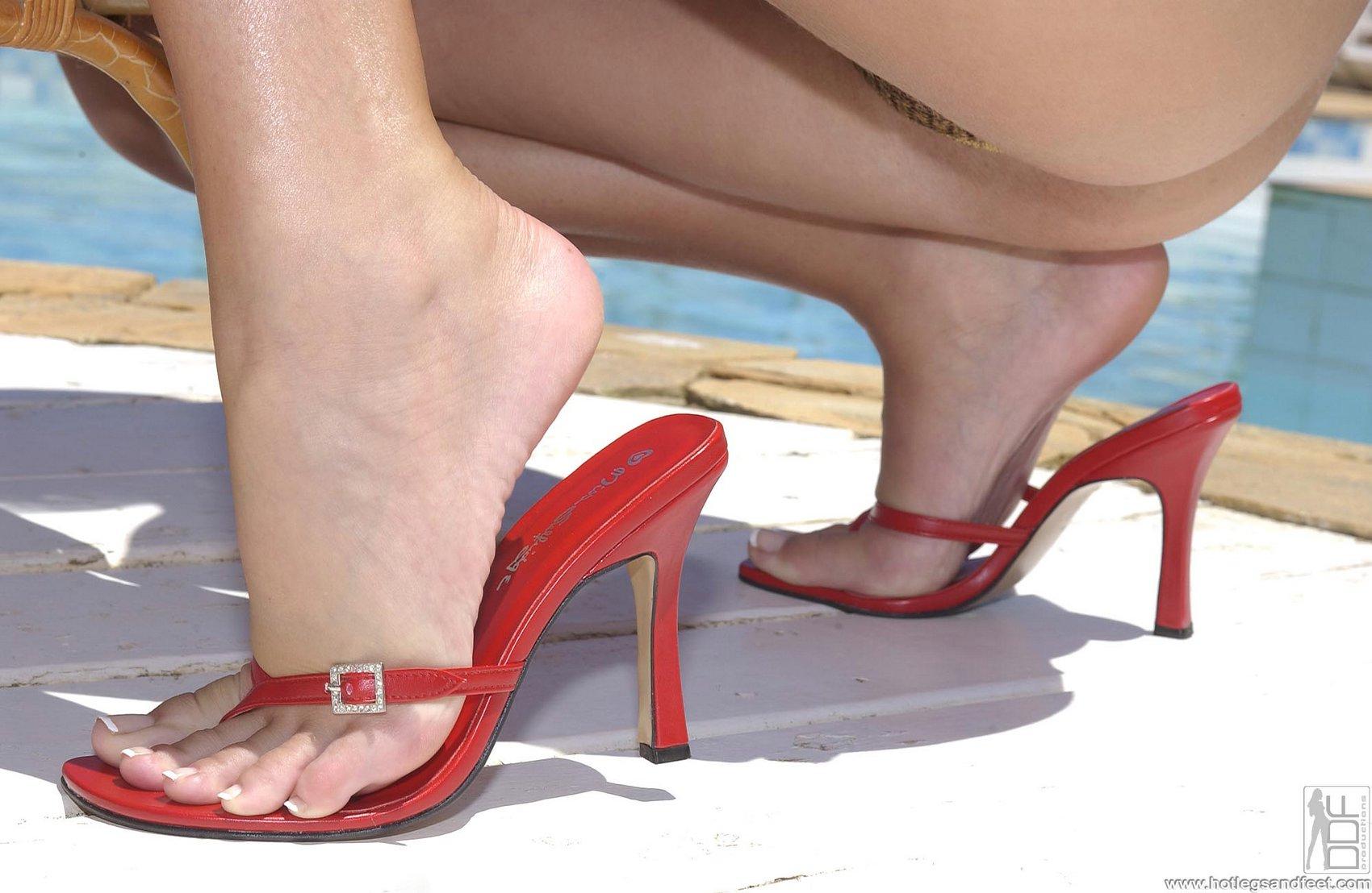 Sandra shine legs share your