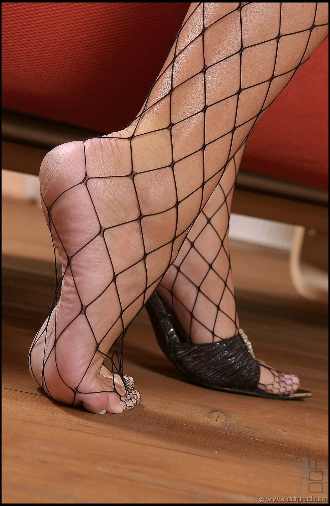 sandra shine in fishnet stockings sucking her toes porn